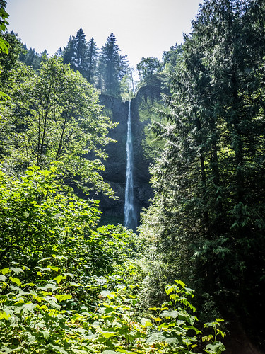 Loutrelle Falls in Columbia Gorge