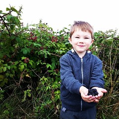 Blackberry picking in #EppingForest