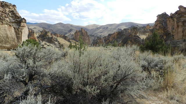 Part of a 2 million-acre wilderness proposal in the Owyhee canyon lands. Credit: Stephen Baboi