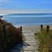 August 18, 2014 - 15:04 - Blog Post here- Pohara, Golden Bay