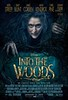 Disney's 'Into the Woods' – Teaser Poster