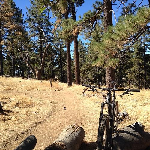 Labor Day ride Big Laguna trail.