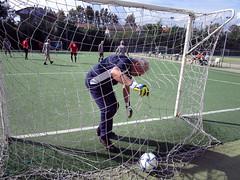 goalkeeper, football player, ball, sport venue, sports, soccer-specific stadium, player, football, net, goal, ball,