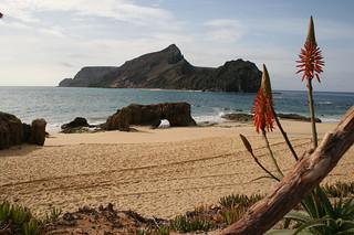 Playa de Porto Santo.