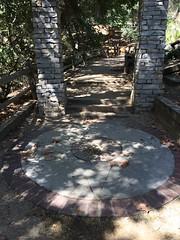 wood, flagstone, road surface, walkway,