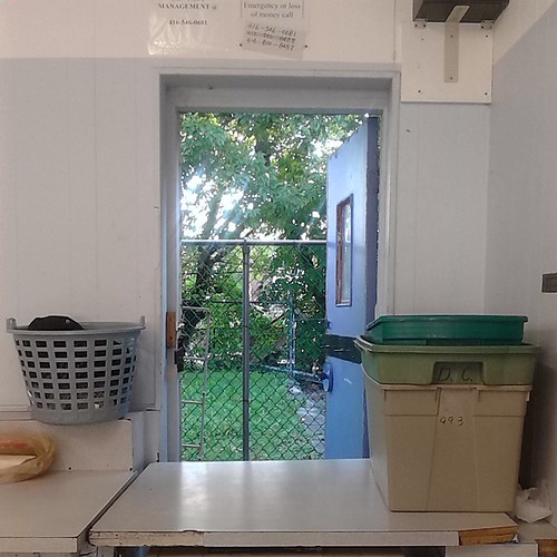 Looking out of the back door of the laundromat, Monday morning