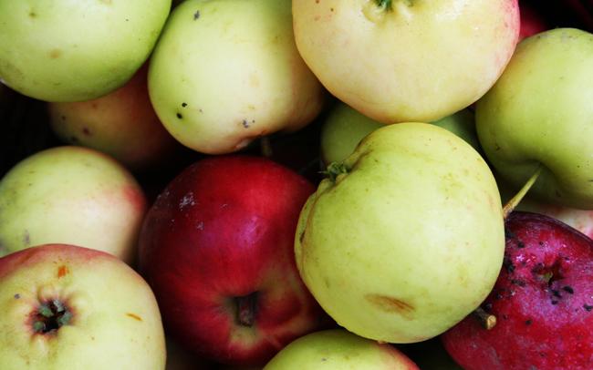 Omenapuilla9