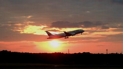 ja825a dreamliner b787 jal japanairlines nrt narita airport transportation aircraft airliner sunset tokyo japan february 2017
