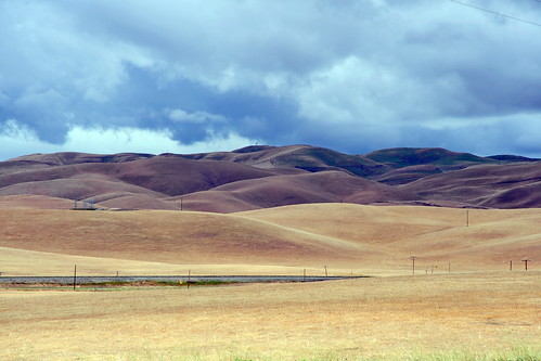 acdseeultimate california earth ecosystem farmfield field flora landscapes may naturalhabitatadventures naturalworld nature nikond700 northamerica photogeorge photoshoot spring tracy unitedstatesofamerica us