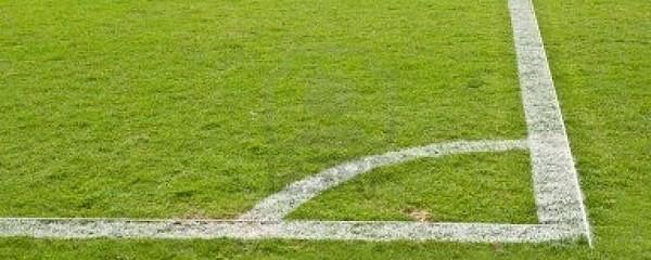 Quality-Grass