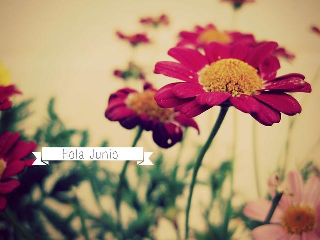 hello_june