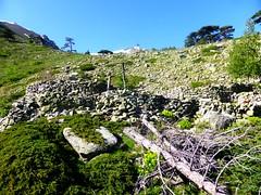 Les bergeries de Capanelle