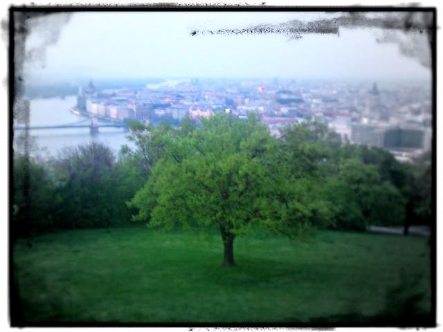 Summer Budapest Photos