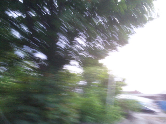 PIC_1324