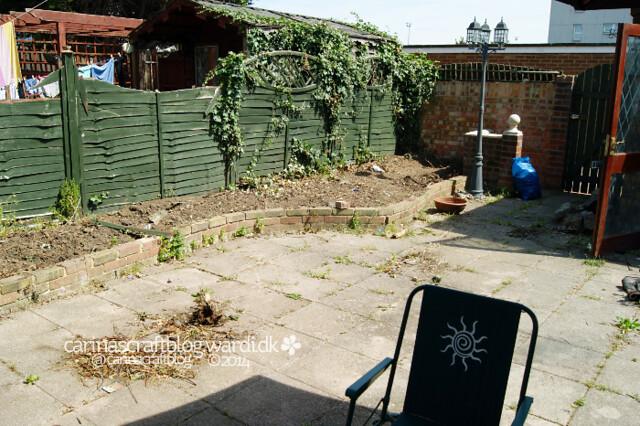 Our garden 05