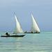 Zanzibar: Dhows