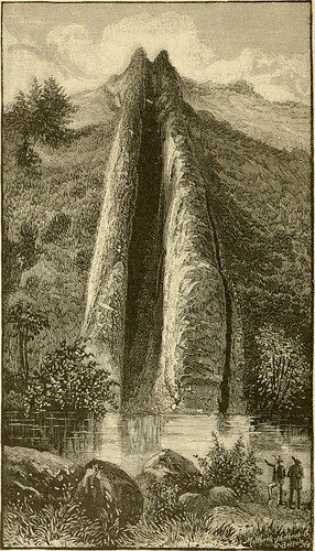 Image from page 119 of