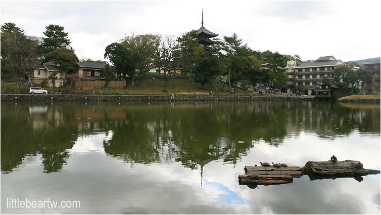興福寺-22