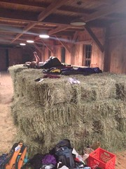 Sleeping on Hay