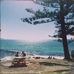 Artefact B10 #burleighheads #australia