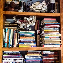 Day 17, #augustbreak2014, Book shelf: Some of my 700+ books. What can I say? I am obsessed with books of all kinds.