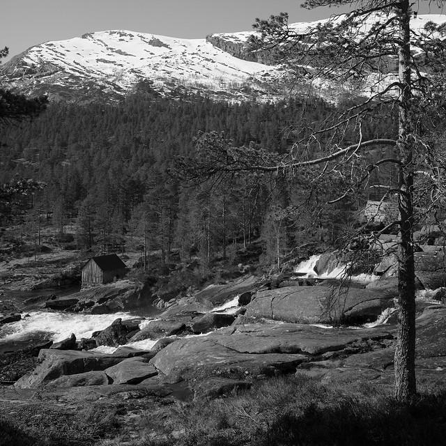 Foss, fjell og skog i bakgrunn