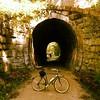 Holliston trail