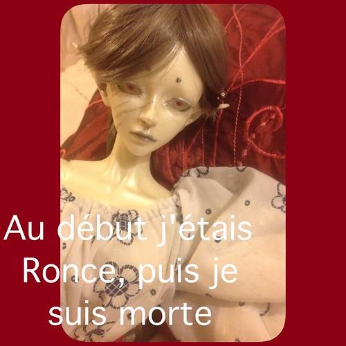 [ famille Mortemiamor ] tranches de vie - Page 68 15056746822_2faebdf479