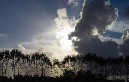 Light and Cloud