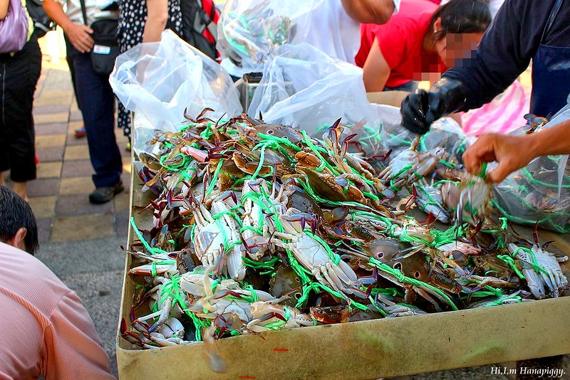 西北萬里蟹 (118)