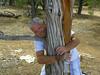 Tree Hugger-2