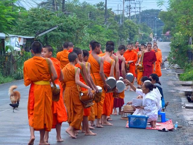Monjes budistas saliendo a recoger limosna en Luang Prabang (Laos)