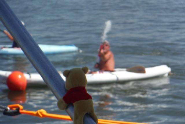 Winnie the Pooh keeps watch
