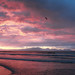 muizenberg sunrise51
