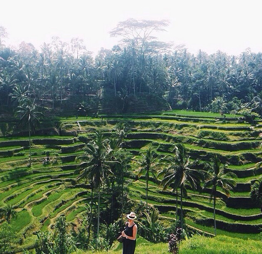 13. Tegallalang-rice-terraces-by cilelecile