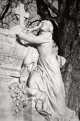 Woman and Grief - Photo of Toulon
