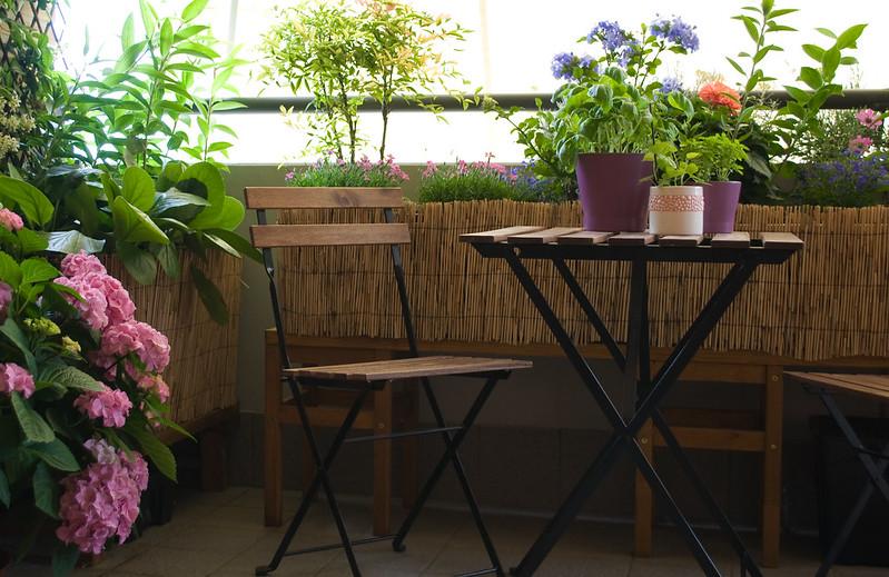Condivido con voi il mio balcone forum di - Cucina sul balcone ...