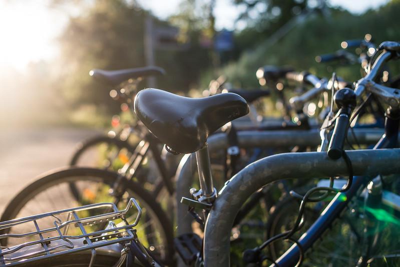 Wanna bike?