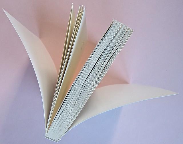 Come finisce il libro, di Alessandro Gazoia (Jumpinschark). minimum fax 2014. Progetto grafico di Riccardo Falcinelli. Taglio superiore (part.), 3