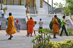 A group of monk- tourists arrives as I exit the premises