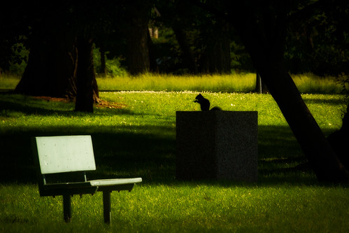 bench hbm benchmonday 100xthe2014edition 100x2014 image46100