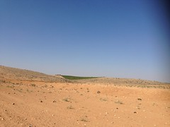 Jordan, zumot vineyards Saint George.