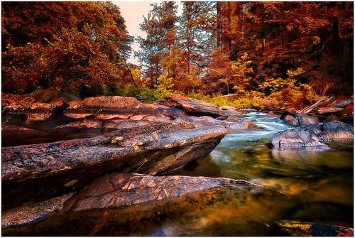 Zen, Steele Creek, NC - Explored 6-27-2014