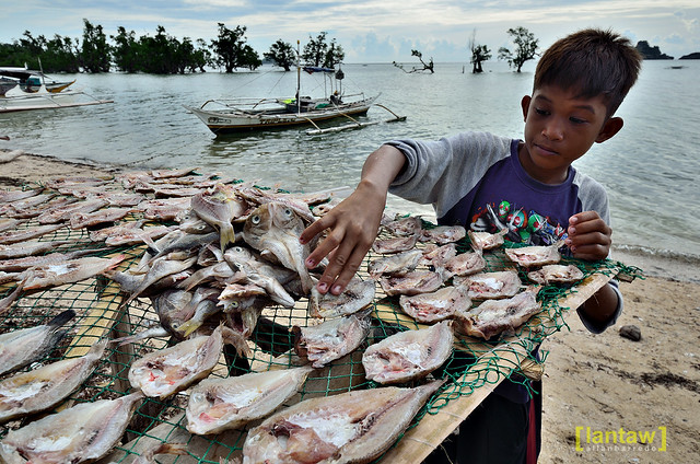 Island life: drying fish