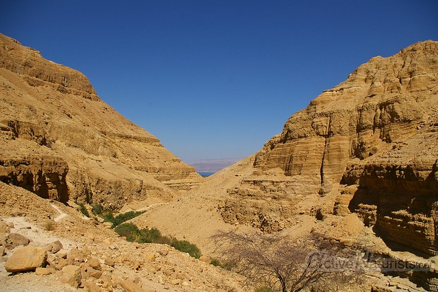 view 0007 Nahal Arugot, Dead Sea, Israel