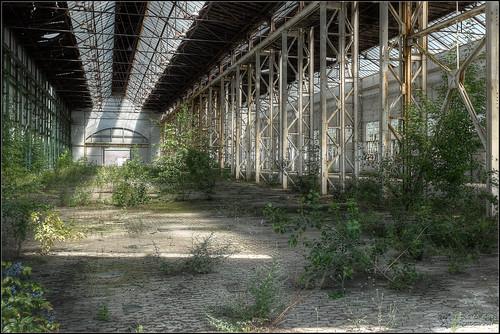 Industry garden