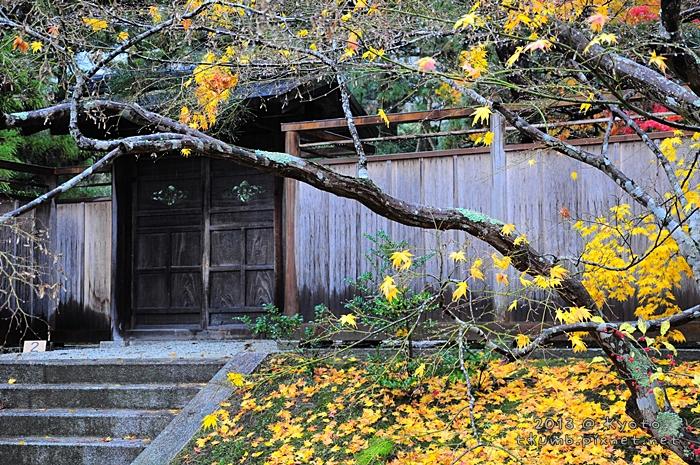 2013修學院離宮 (3).jpg