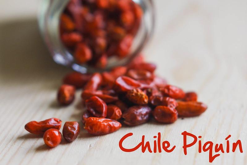 Chile Piquin #1