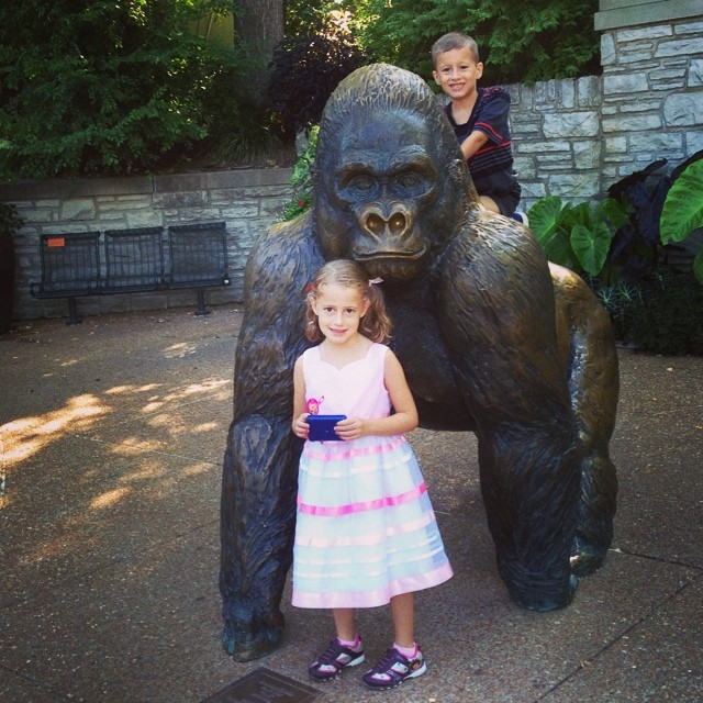 Another zoo day!! Checking out the apes today!! And, yeah... Someone has to dress up as a princess today.