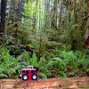Music Anywhere - #BoomCase #Victoria @ExploreCanada